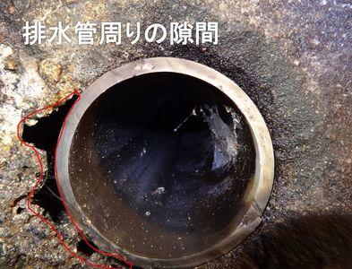 7.排水管周りの隙間.jpg