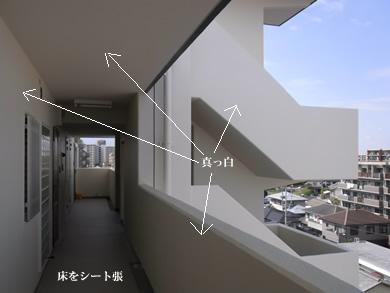福岡 賃貸 共用廊下.jpg